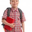 Boy with backpack and book — Stock Photo #1843746