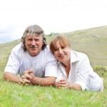 Adult couple — Stock Photo #2457866