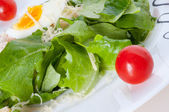Fresh salad with lettuce and tomatoes — Stock Photo