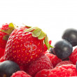 Fresh berries — Foto de Stock