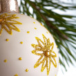 Christmas fir isolated — Stock Photo #1631462