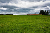 Rural grassland — Stock Photo