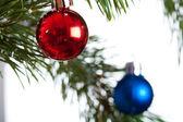 Isolado de abeto de Natal — Fotografia Stock