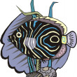 Beautiful Fish Vector — Imagen vectorial