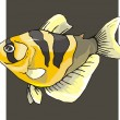 Beautiful Fish Vector On Background — Stock Vector #1604022