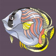 Beautiful Fish Vector On Background — Stock Vector #1604044