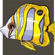 Beautiful Fish Vector On Background — Stock Vector #1604131