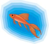 Beautiful Fish Vector On Background — Stock Vector