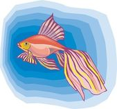 Beautiful Fish Vector — Stock Vector