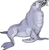 Vector illustration of a seal. — Stock Vector