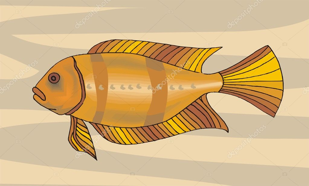 Beautiful Illustration Of Fish Vector  Stock Vector #1604223