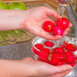 Stock Photo: Girl washes radish