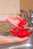 The girl washes a radish — Stock Photo