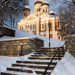 Alexander Nevsky Cathedral. Tallinn - Stock Photo