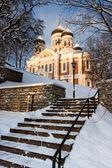 Alexander Nevsky Cathedral. Tallinn — Stock Photo