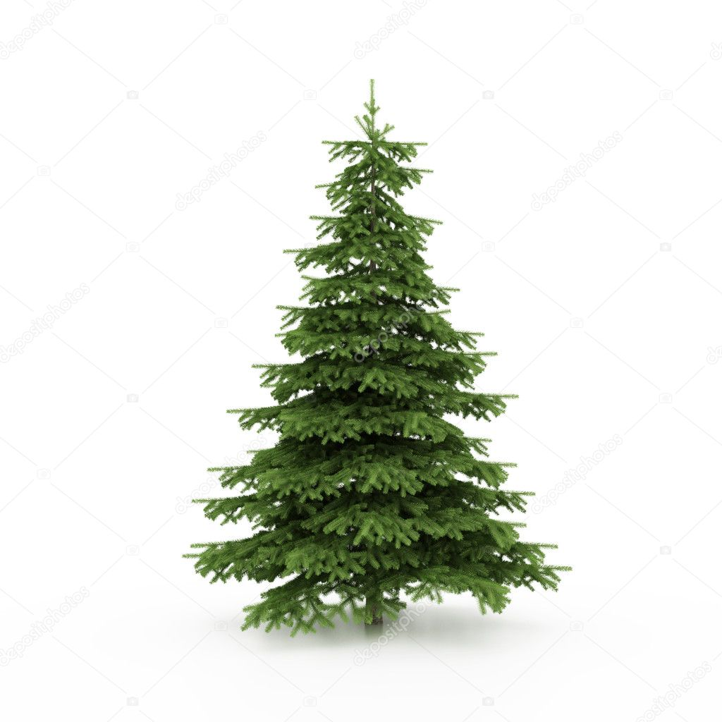 The Christmas tree ready to decorate — Stockfoto #1722406