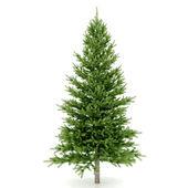 Pronto para decorar a árvore de natal — Foto Stock