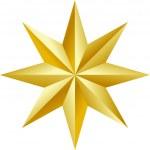 Beautiful golden star Vector — Stock Vector