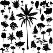 Perfect transparent tree vectors — Stock Vector