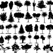 Perfect transparent tree vectors — Vetorial Stock #2006532