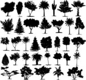 Perfect transparent tree vectors — Vetorial Stock