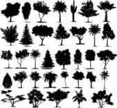 Vetores perfeita árvore transparente — Vetorial Stock
