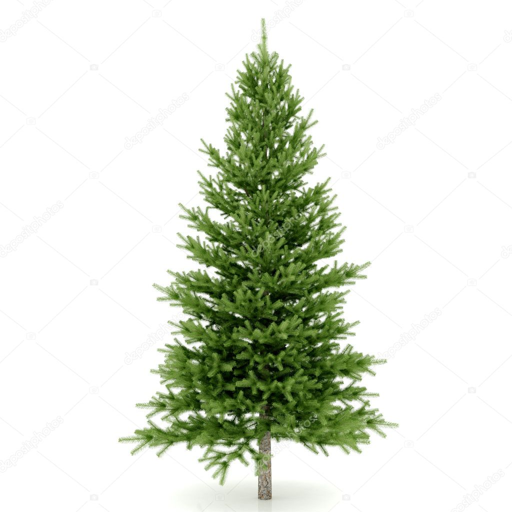 The Christmas tree ready to decorate — Stock Photo #2130280