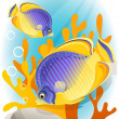 Stock Vector: Angelfish