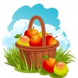 Basket with apples — Stock Vector #2004128