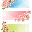 Flower banner — Stock Vector #2010391
