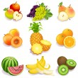 Fruits - Image vectorielle