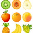 Stock Vector: Fruit