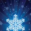 Snowflake — Stock Vector #2013893