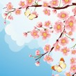 Sakura - Stock Vector