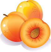 Peach — Stock Vector