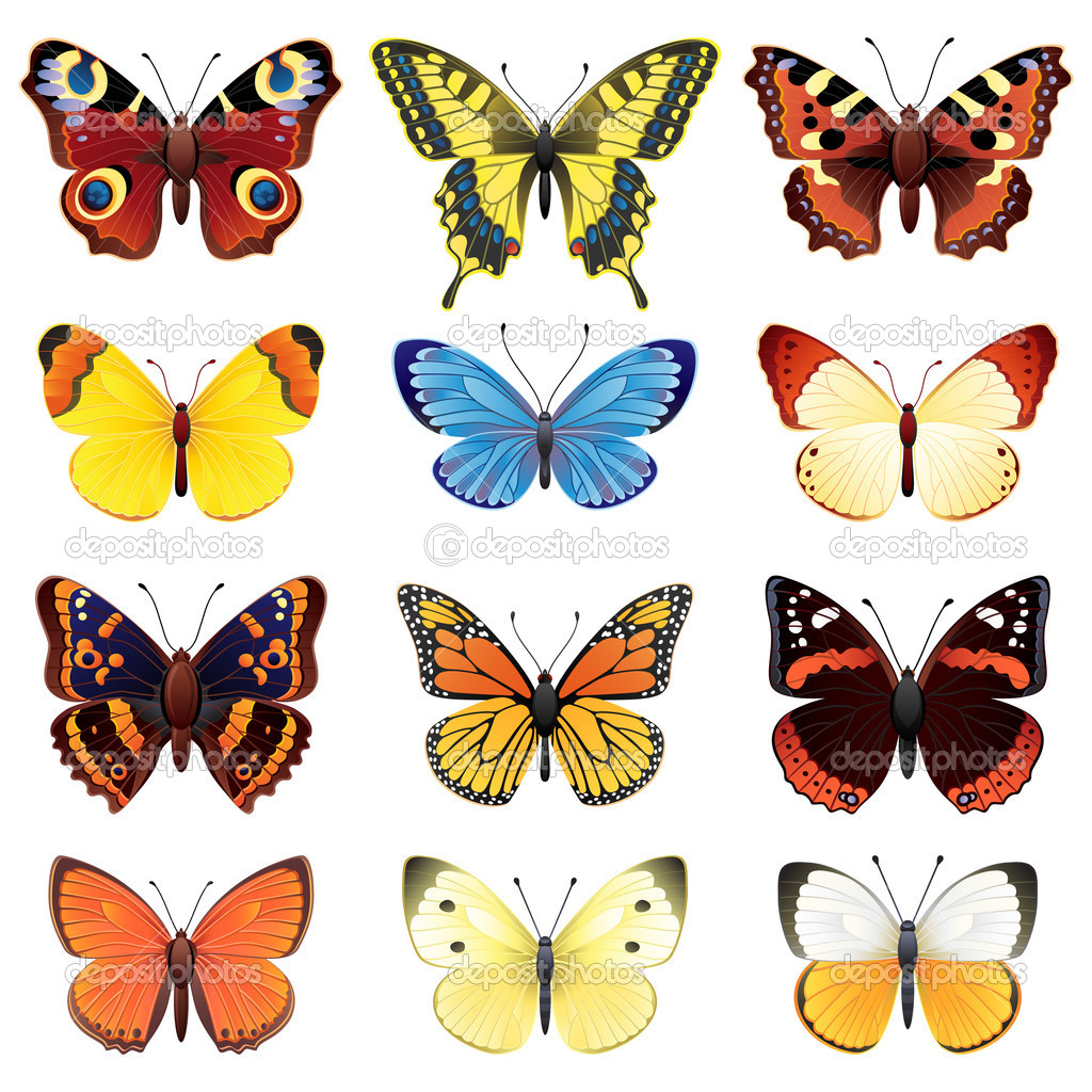 Vector illustration - butterfly icon set — Stock Vector #2010447