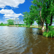 Stock Photo: Rural riverside
