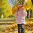 Funny happy child in autumn park — Stock Photo #1929934