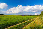Idilic rural landscape — Stock Photo
