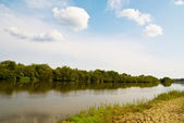 Idillyc rural riverside landscape — Stock Photo