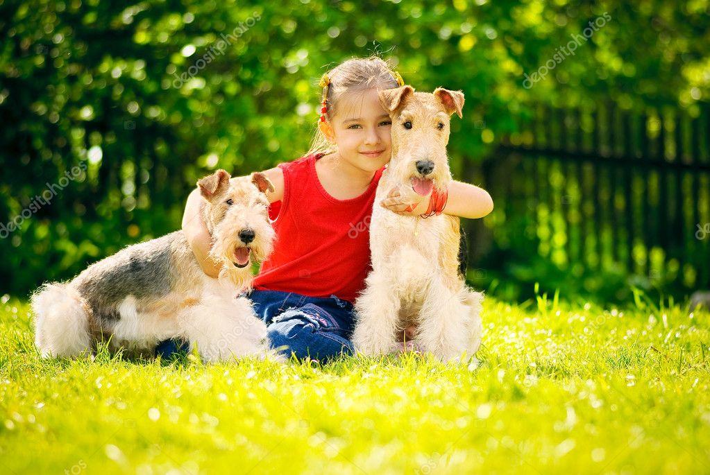 Маленькая девочка с двумя собаками породы фокстерьер на зеленом газоне