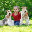 The girl and two fox terriers — Stock Photo