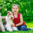 Stock Photo: The girl and two fox terriers