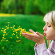 The girl blows off flower petals — Stock Photo