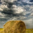 Haystack in  field - Stock Photo