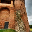 Tower and fortification - Stock Photo