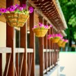 Porch with flower pots — Stock Photo #1607913