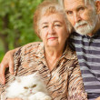 Elderly pair with Persian cat — Stock fotografie