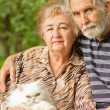 Elderly pair with Persian cat — Stock Photo