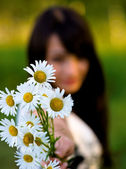 Girl stretches bouquet of camomiles — Stock Photo